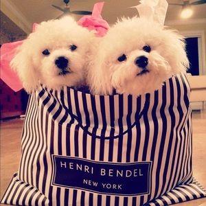 henri bendel Other - Henri bendel dog bowl Gold plated dog tag